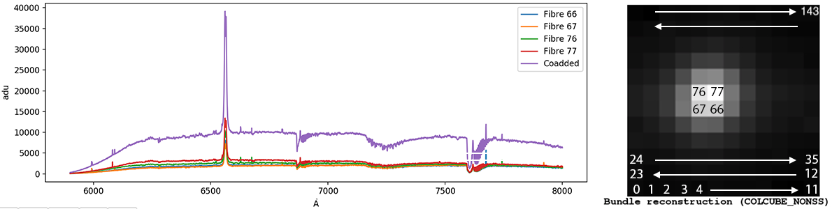 Example of spectrum extracted from RSS