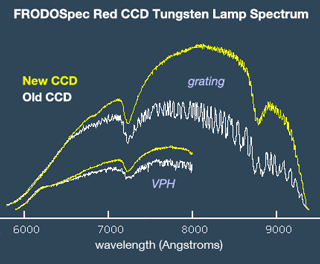 FRODOSpec Red Old/New CCD Spectrum of Tungsten Lamp